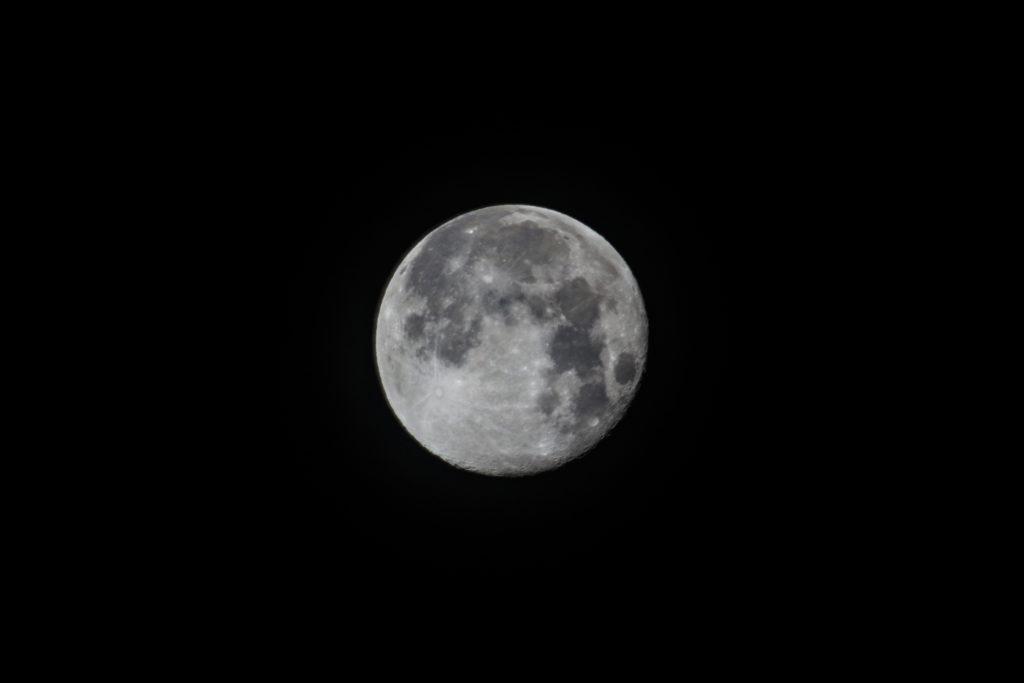 月影テスト撮影小1